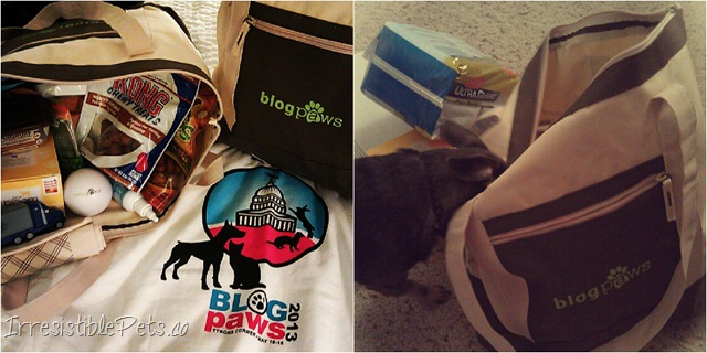 BlogPaws Swag Bags