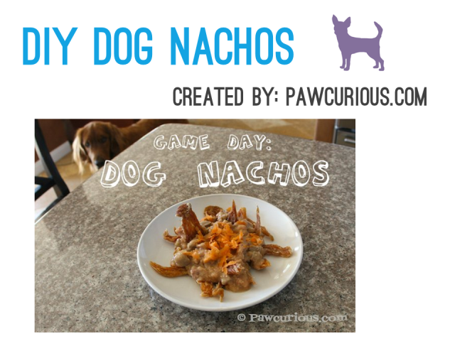 Cinco de Mayo - DIY Dog Nachos