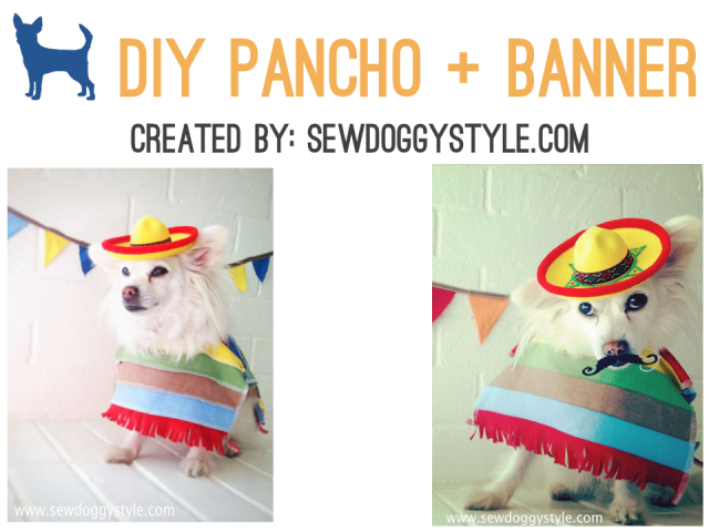 diy dog pancho cinco de mayo