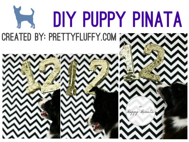 Cinco de Mayo - DIY Puppy Pinata