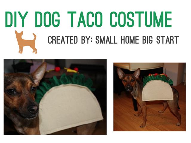 Cinco de Mayo - DIY Taco Costume