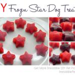 DIY Pet Treats for Memorial Day
