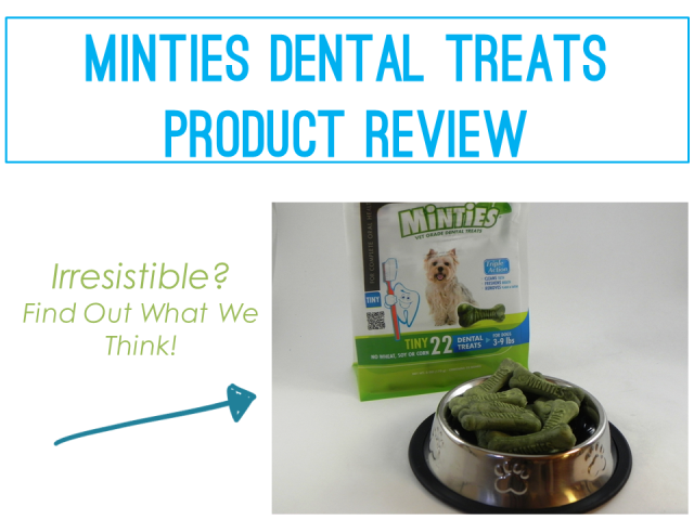 Product Review - Minties Dental Treats