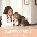 Grain Free Cat Food 101 {Plus Giveaway!}
