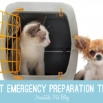How to Prepare for a Pet Emergency with #HillsPet