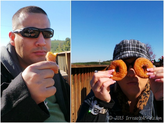 Apple Cider Donuts - Carter Mountain Orchard