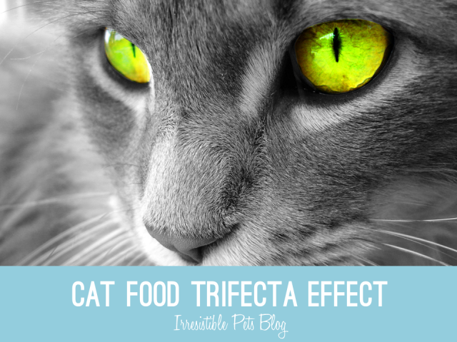 Hills Science Diet Trifecta Effect - IrresistiblePets.com