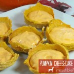 Irresistible Pumpkin Cheesecake Dog Treat Recipe