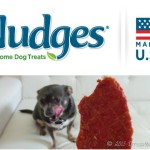 Irresistibly Safe Chicken Jerky Treats for Dogs #NudgesMoments