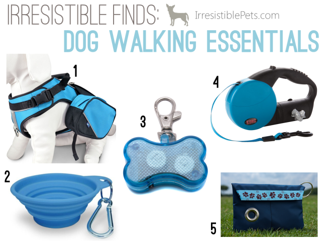 Five Irresistible Dog Walking Essentails on IrresistiblePets.com