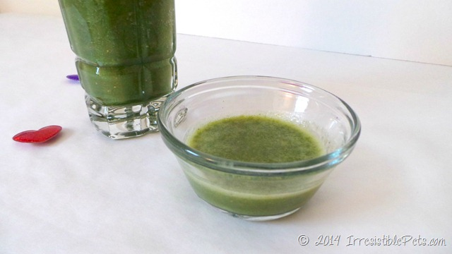 Irresistible Green Smoothie for You and Your Dog Bowl