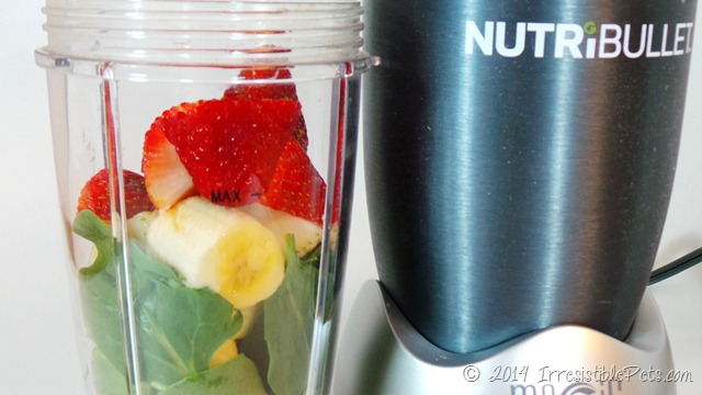 Irresistible Green Smoothie for You and Your Dog Mix in NutriBullet