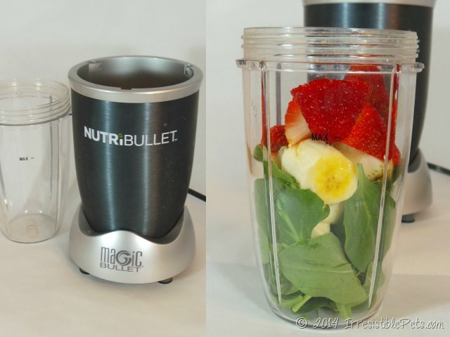 Irresistible Green Smoothie for You and Your Dog NutriBullet