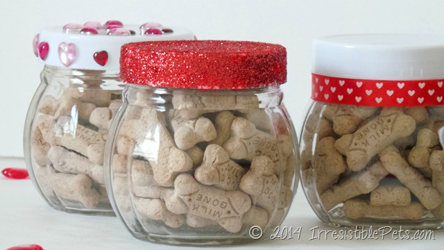 DIY Valentines Day Dog Treat Jar from IrresisiblePets.com