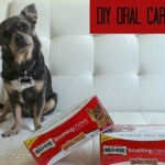 DIY Oral Care for Dogs with #MilkBone Brushing Chews