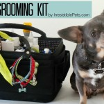 DIY Pet Grooming Kit
