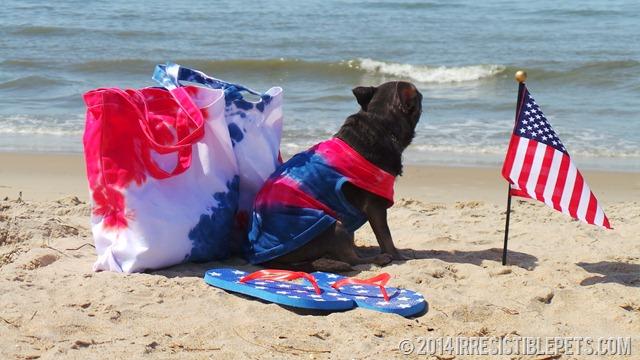 DIY Patriotic Beach Bag Sneak Peek