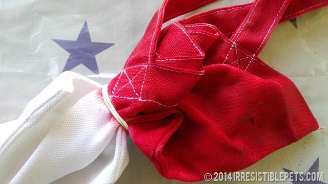 DIY Patriotic Tie Dye Beach Bag Tie Dye