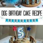 Dog Birthday Cake Recipe for Chuy's 5th Birthday