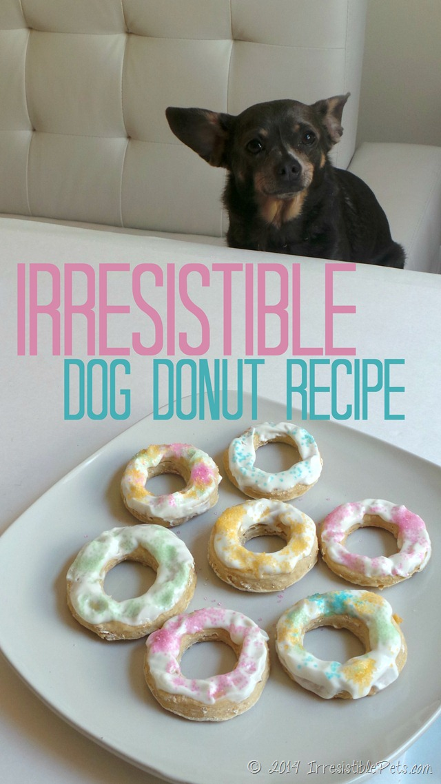 Irresistible Dog Donut Recipe from IrresistiblePets.com