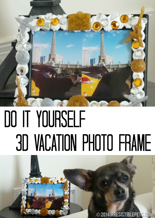 DIY 3D Vacation Photo Frame by IrresistiblePets.com