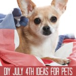 DIY Fourth of July Ideas for Pets