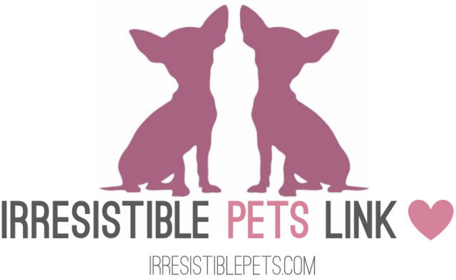 Irresistible Pets Link Love