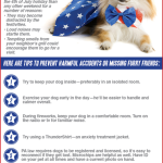 Pet Safety Tips for July 4th Weekend