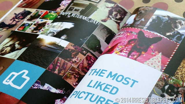 My Social Book - Most Liked Pics