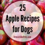 Irresistible Apple Recipes for Dogs