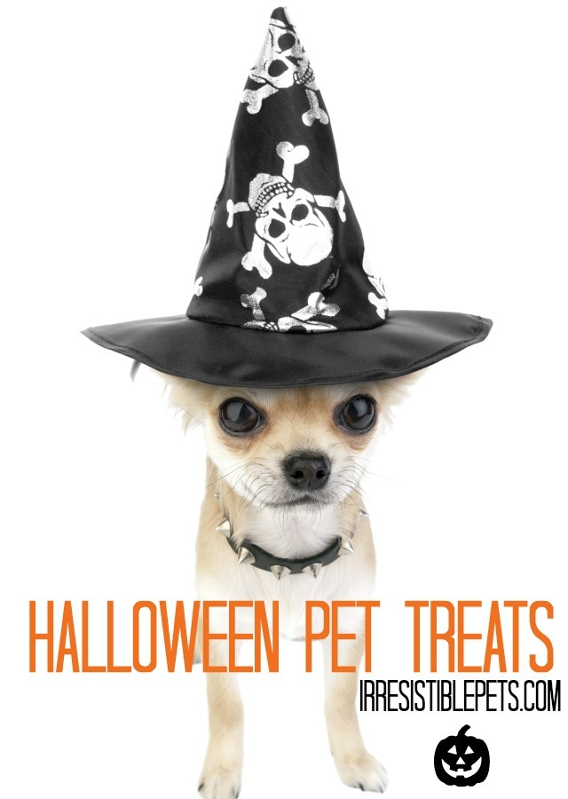 Halloween Pet Treats IrresistiblePets.com