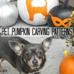 Pet-Pumpkin-Carving-Patterns-and-Ideas-from-IrresistiblePets.com_.jpg