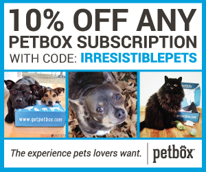 Pet Box Subscription