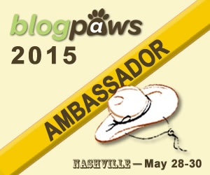 AmbassadorBadge-300x250-2015