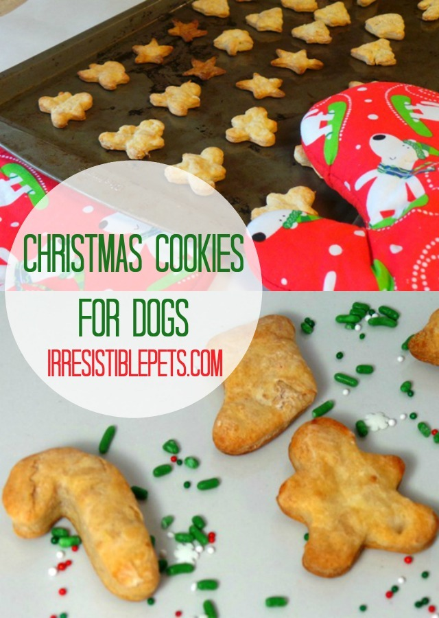 Christmas Cookies for Dogs by IrresistiblePets.com