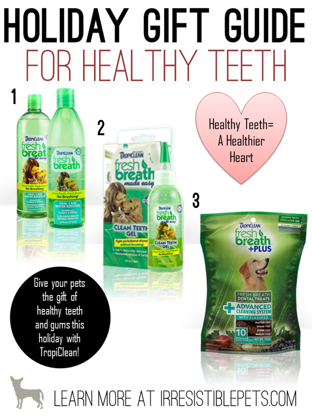 Holiday Gift Guide for Healthy Teeth by IrresistiblePets.com