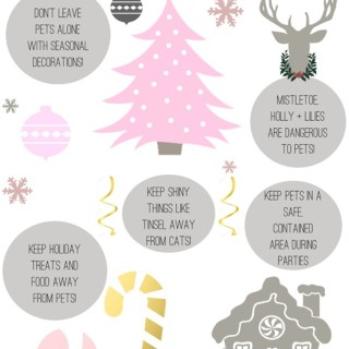 Holiday-Pet-Safety-Tips-by-IrresistiblePets.com_.jpg