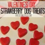 Frozen Strawberry Smoothie Dog Treat Recipe