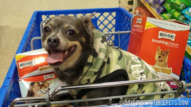 Milk-Bone Brushing Chews at PetSmart