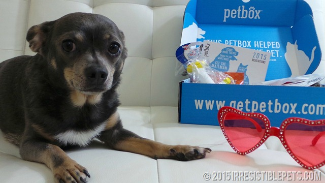 PetBox January Review and Valentine's Day Giveaway