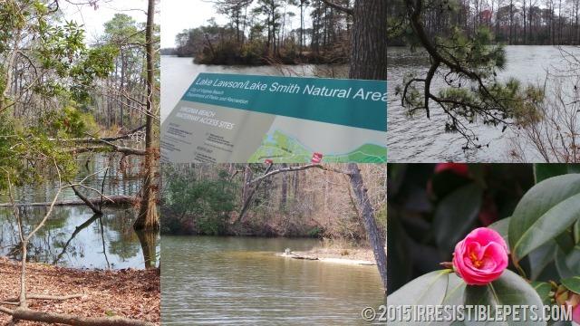 Lake Smith Natural Area
