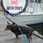 Crabbing with Chuy at Cape Hatteras Landing