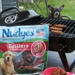How To Have an Irresistible Backyard BBQ with Your Dog