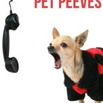 Pet Blogging Pet Peeves