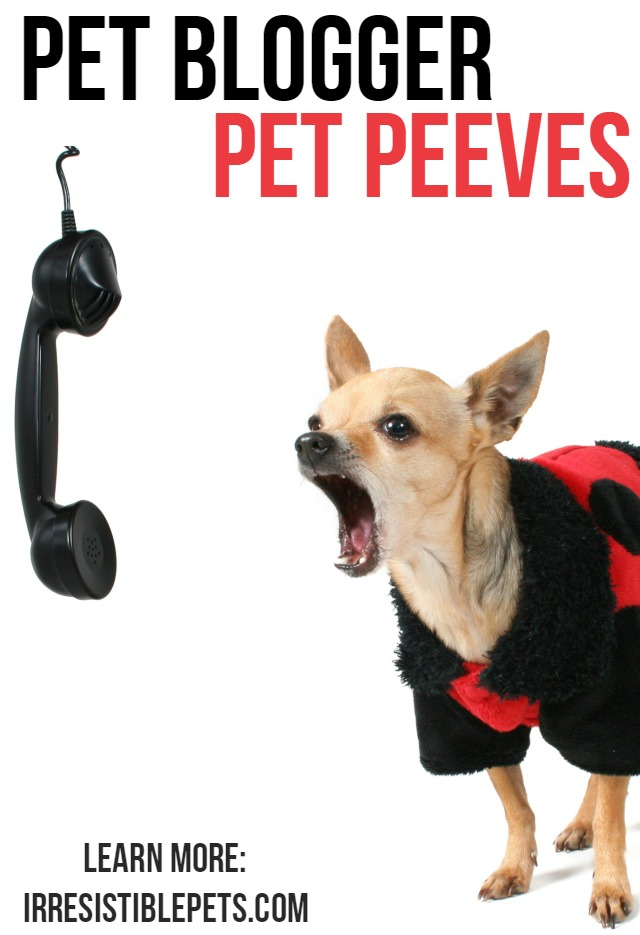 Pet Blogger Pet Peeves by IrresistiblePets.com