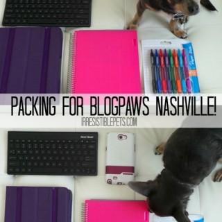 Packing-for-BlogPaws-Nashville-IrresistiblePets.com_.jpg