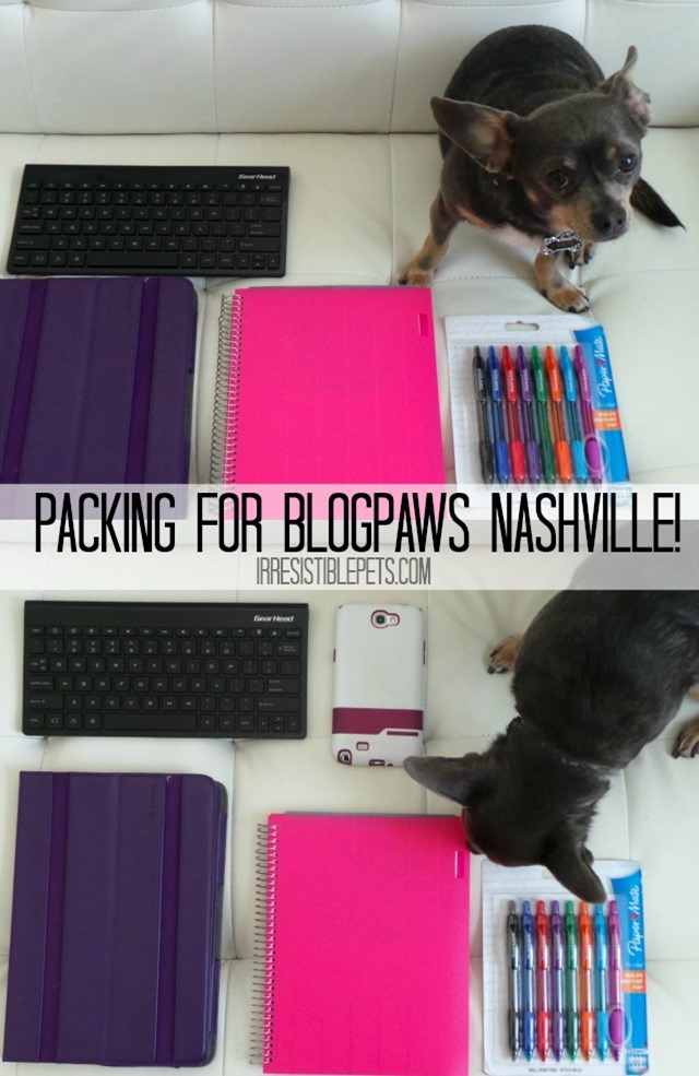 Packing for BlogPaws Nashville IrresistiblePets.com