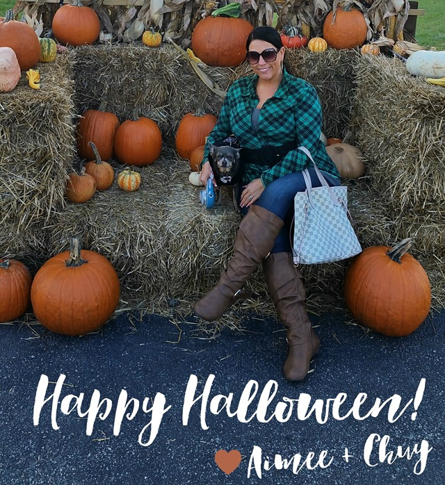 Happy Halloween 2015 IrresistiblePets.com