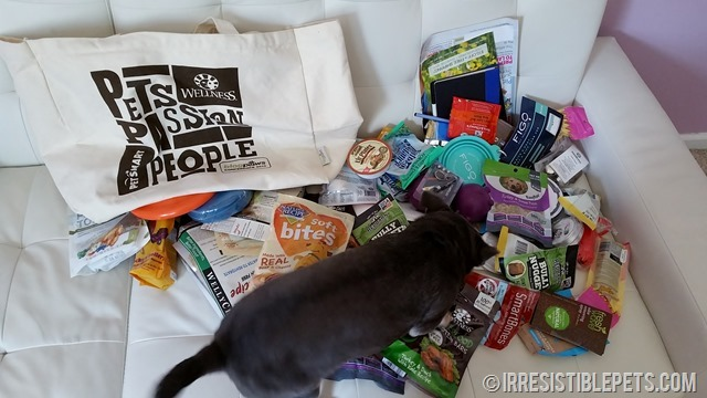 BlogPaws Swag Bag