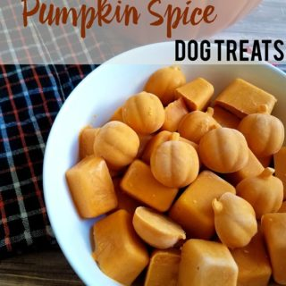 DIY-Frozen-Pumpkin-Spice-Dog-Treats-by-IrresistiblePets.com_.jpg